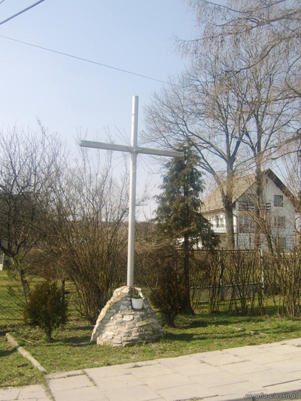 Parafia i wieś Cieślin [052]