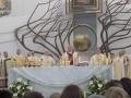 Pielgrzymka Diecezji Sosnowieckiej do Sanktuarium Bożego Miłosierdzia w Krakowie-Łagiewnikach (04.06.2016) [060]
