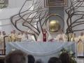 Pielgrzymka Diecezji Sosnowieckiej do Sanktuarium Bożego Miłosierdzia w Krakowie-Łagiewnikach (04.06.2016) [069]