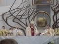 Pielgrzymka Diecezji Sosnowieckiej do Sanktuarium Bożego Miłosierdzia w Krakowie-Łagiewnikach (04.06.2016) [071]
