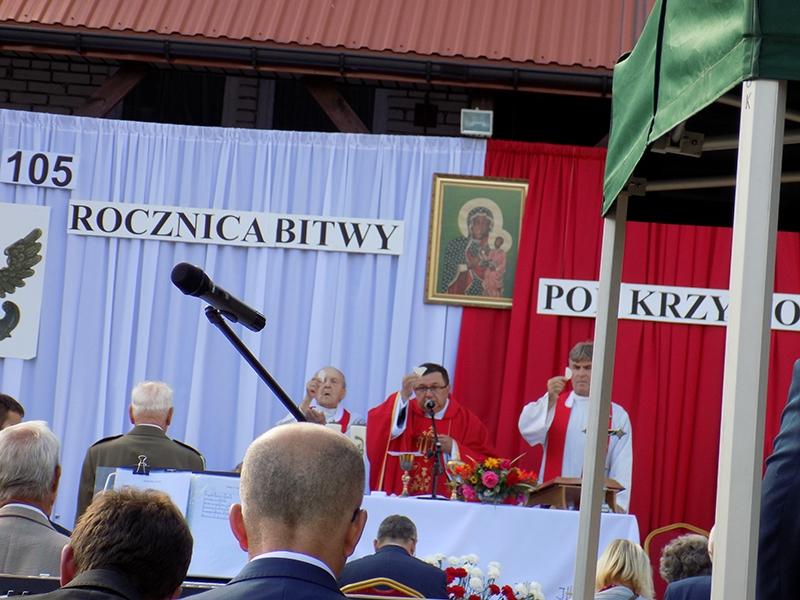 VI Piknik Historyczny JURA 1914 w Krzywopłotach (14.09.2019) [031]
