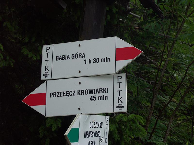 Wycieczka do Babiogórskiego Parku Narodowego 2015 r. (01.07.2015) [006]
