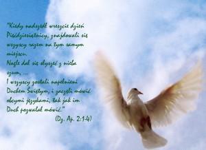 Zesłanie Ducha Świętego 2015 r.