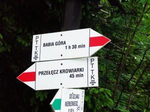 Wycieczka do Babiogórskiego Parku Narodowego 2015 r. (01.07.2015).